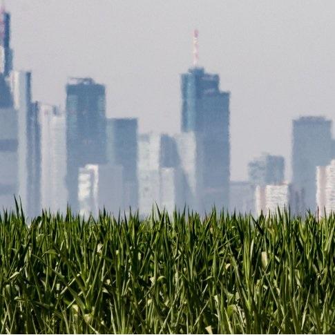 EZB-Experten warnen vor Immobilienblase in Europa